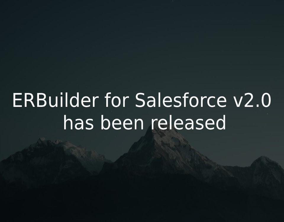 ERBuilder for Salesforce v2.0 released
