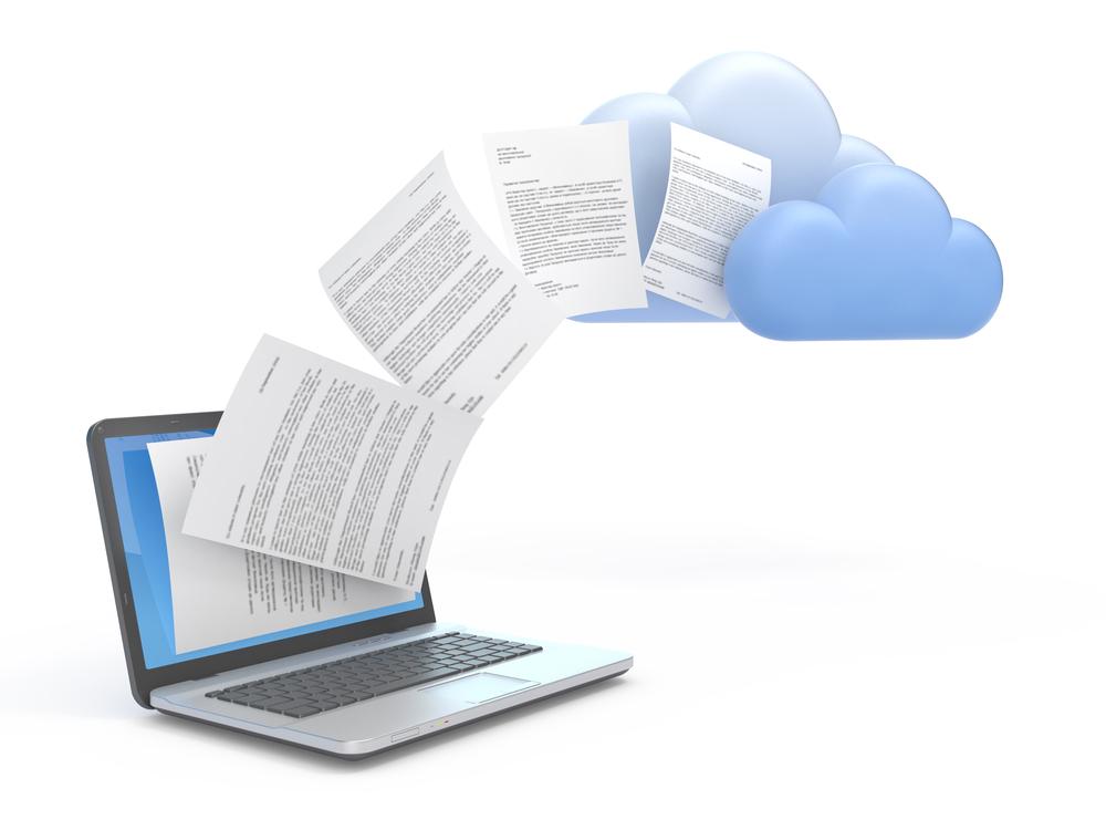 document salesforce org