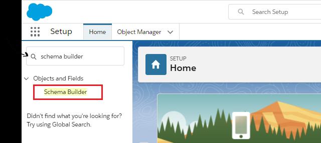 Access to Schema builder Salesforce